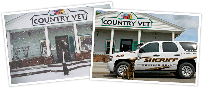 Collage of photos infront of Country Vet clinic